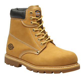 Chaussure Dickies Cleveland